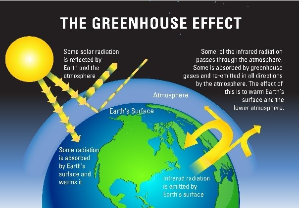 The Greenhouse Effect Is A Scientific Fallacy